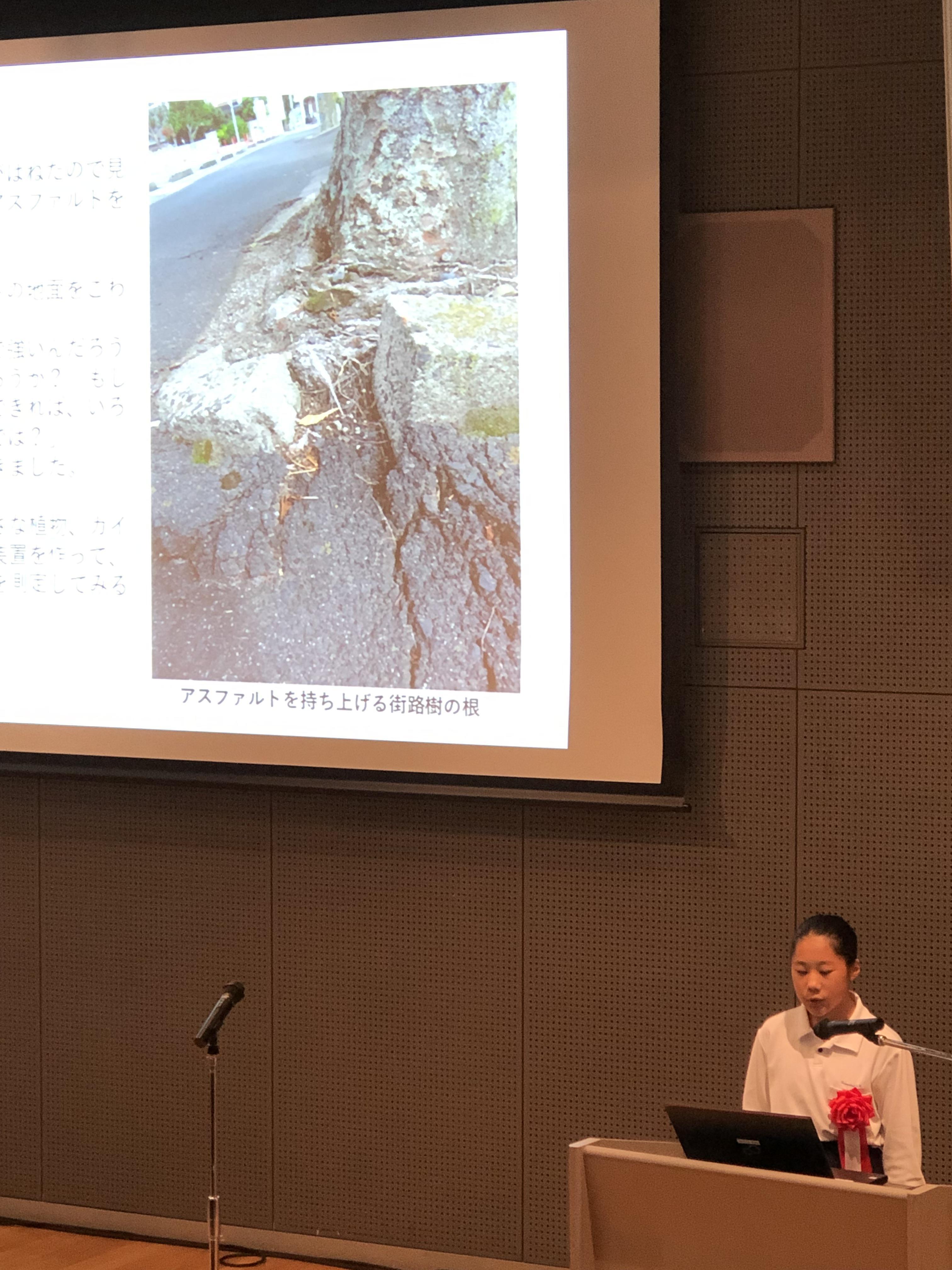 科学作品展2.JPG