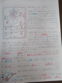 IMG_6997.JPG