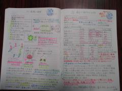 IMG_0341[1].JPG