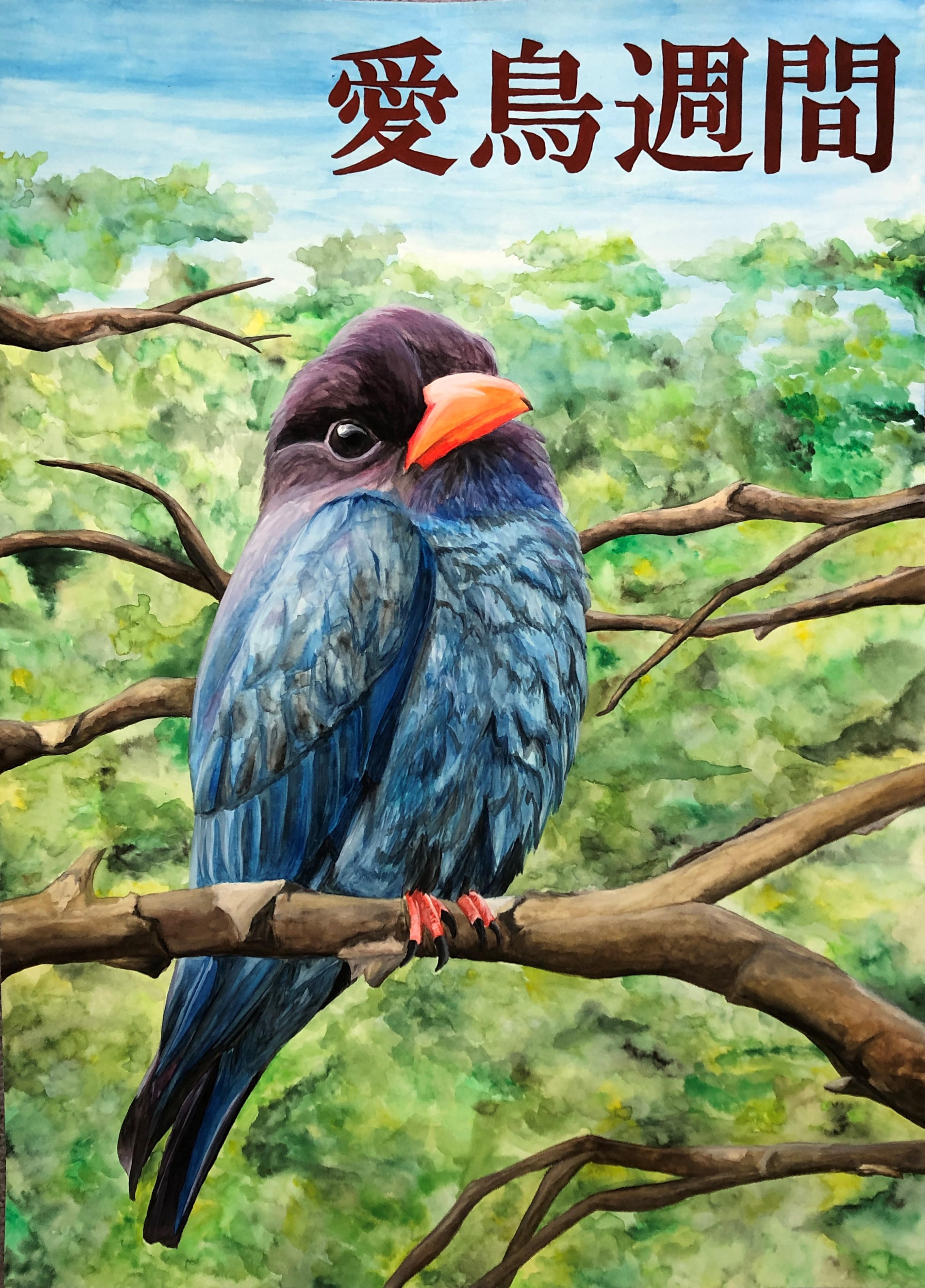 週間 ポスター 愛鳥 令和3年度愛鳥週間用ポスター