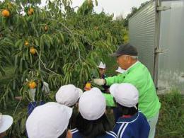 10.25柿農家 (1).JPG