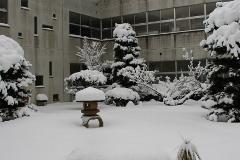 大雪1 (240x160).jpg