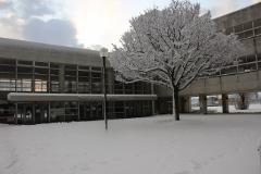 大雪2 (240x160).jpg