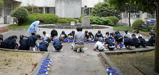 5.18アサガオ.JPG