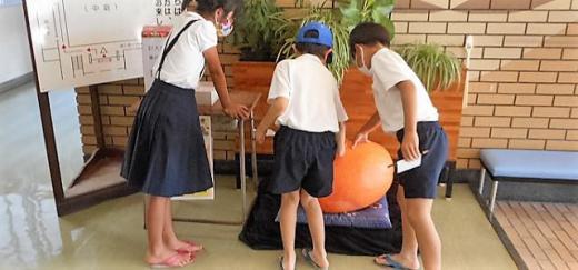9.3かぼちゃ.JPG