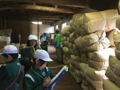 茶工場2.jpg