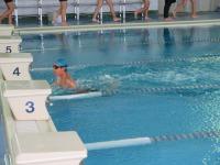 水泳大会1.jpg