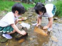 猪目川での活動(1)