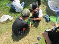 0901mushi (3).JPG