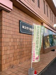 1001shizen (6).jpeg
