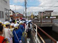 高瀬川③.JPG